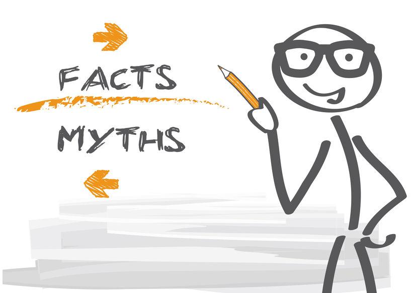 Fakty i mity pozycjonowania strony